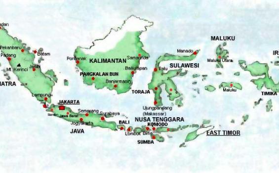 Yang Dicemaskan WHO Setelah Dengar Kabar Indonesia Bebas Virus Corona